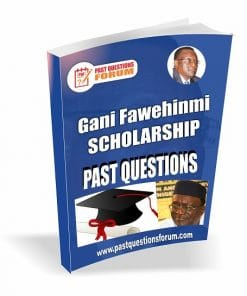 Gani Fawehinmi Undergraduate Scholarship Past Questions